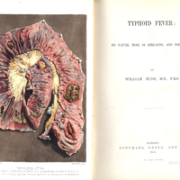 Budd's Typoid Fever title page044.jpg